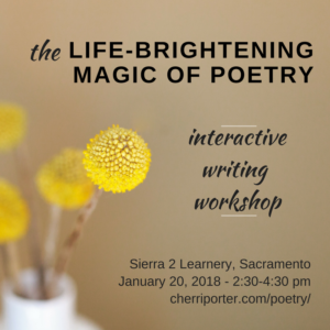 graphic with poetry workshop details